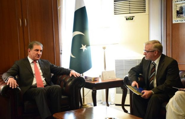 EU Chief Election Observer called on FM Qureshi