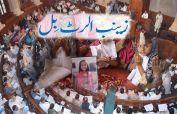 Punjab govt decides to adopt Zainab Alert Bill in province