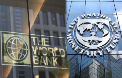 World Bank and IMF call for suspending debt payment by developing countries