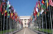 Pakistan elected as member of three United Nations bodies