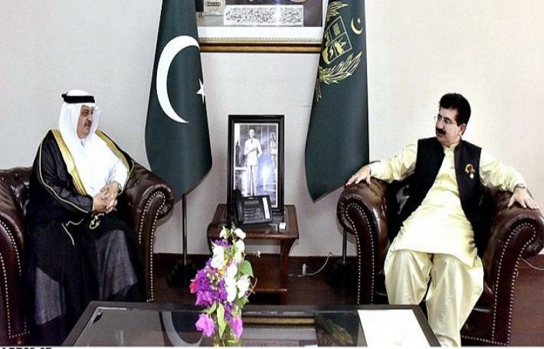Pak-Saudia have traditional and historical linkages, Chairman Senate