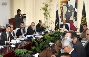 ECC okays gas supply to PSM; ends regulatory duty on cotton import