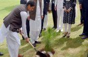 PM Imran inaugurates spring tree plantation drive at Kundian Mianwali