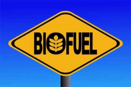 France to use bio-fuel as energy alternative