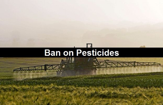 Humans Health risk for using pesticides