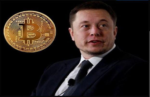 Billionaire CEO Elon Musk