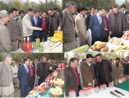 Exhibition of cultivated crops held in baltistan