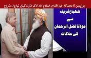 Shehbaz Sharif, Fazal ur Rehman agree on Azadi March
