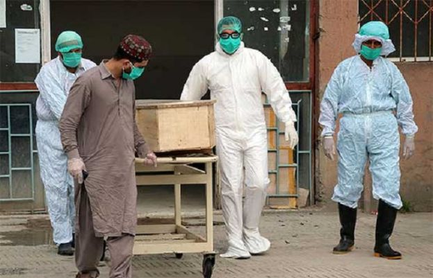 Corona claims 40 more lives, 1,037 fresh cases report in pakistan