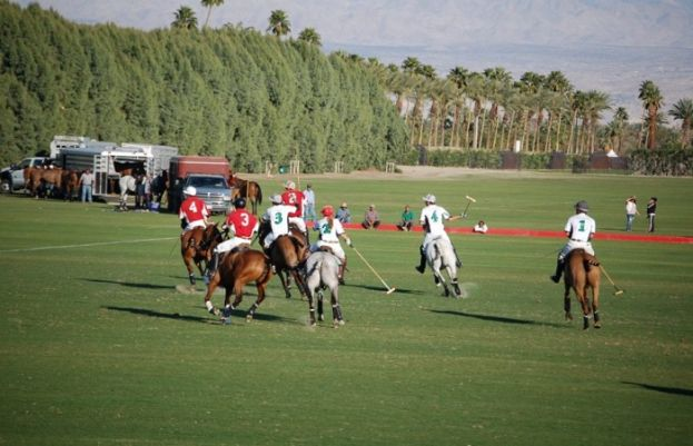 PAF Blue stood in first place in the Polo Tournament