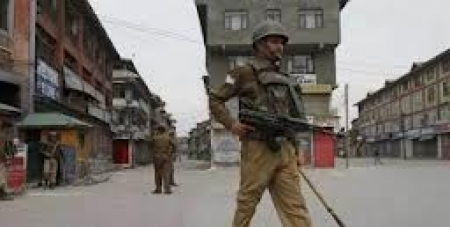 Indian army collecting details of households in Kashmir