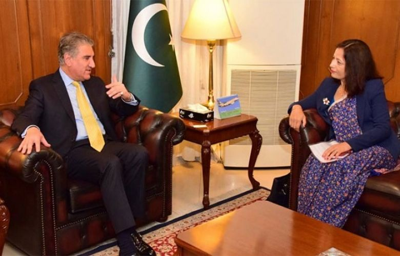 Nepalese envoy, FM Qureshi discuss matters of mutual interest