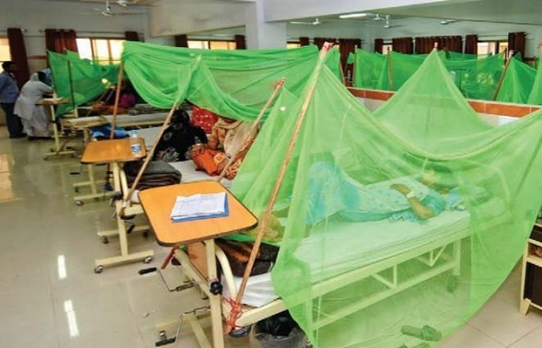Number of dengue patients increasing day by day