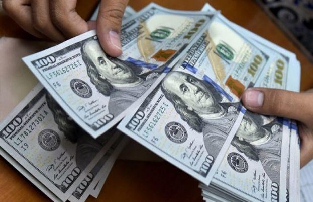 Dollar Appreciates in Interbank