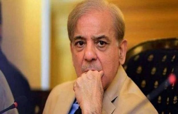 Shehbaz Sharif rejects PM Imran Khan's Kashmir referendum proposal