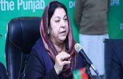 920 cases of coronavirus confirmed in Punjab: Dr Yasmin Rashid