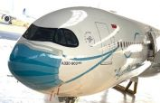 Indonesian aircraft 'wears mask' to spread awareness about coronavirus
