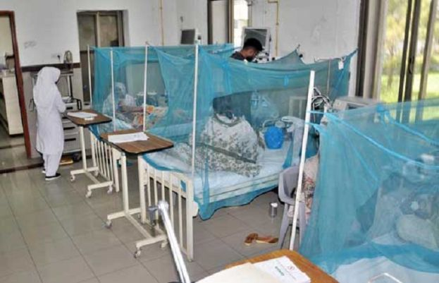 A record number of dengue fever cases reported in Islamabad
