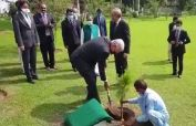 UNGA President planted a sapling at the office of foreign ministry