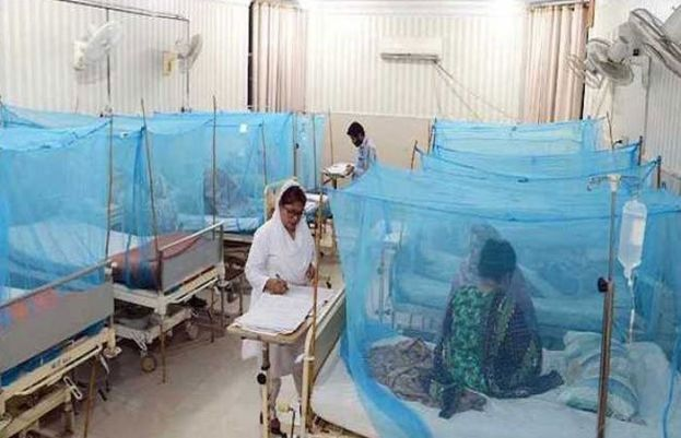 Islamabad reports 459 new dengue cases overnight
