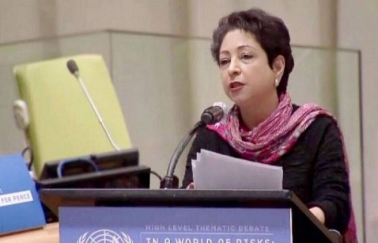 Pakistan's permanent representative to the United Nations Dr. Maleeha Lodhi