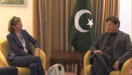 Chairperson Telenor calles on PM Imran on sidelines of WEF