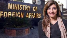 Pakistan welcomes joint statement by int'l organizations on IOK restrictions: FO