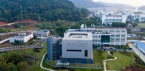 'Wuhan's virology institute had three live bat coronaviruses, none matched COVID-19'