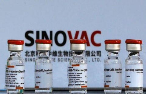 سائنوویک ویکسین کورونا کے خلاف انتہائی مؤثر ثابت