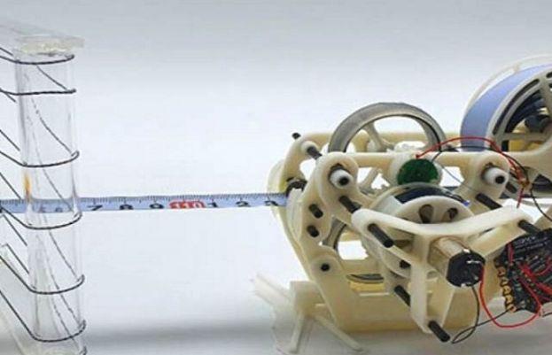 جنوبی کوریا کے ماہرین نے گرگٹ نما روبوٹ بنایا ہے