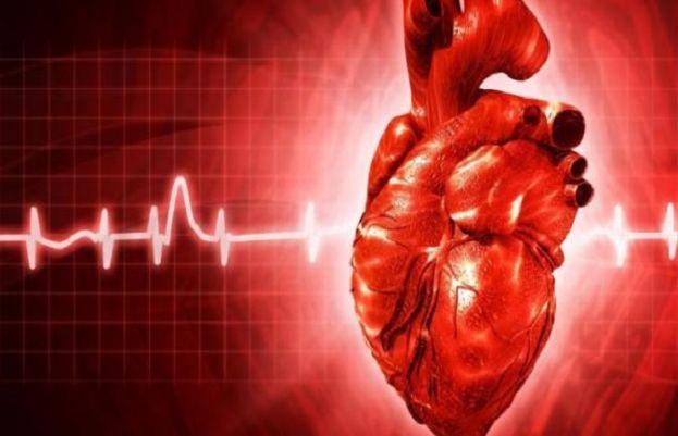 دل کے مریضوں کے لیے خوشخبری، سائنسدانوں کی اہم پیش رفت